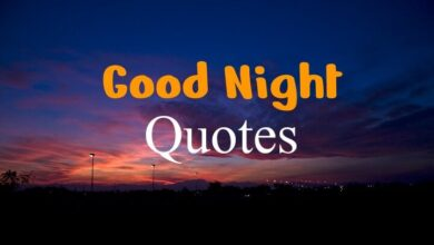 Good Night Quotes in Hindi for Friends and Love