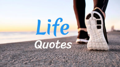 Life Quotes in Hindi That Will Motivate You