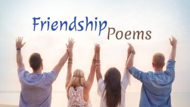 hindi poems on friendship